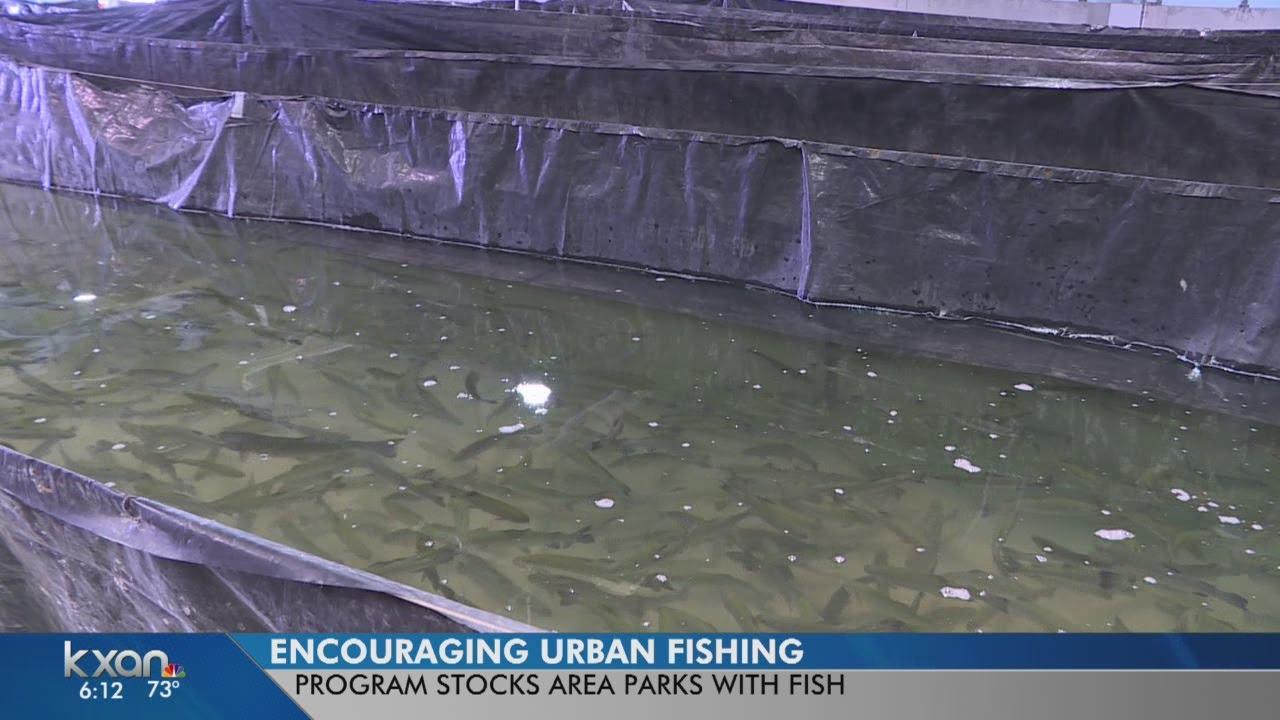 San Marcos Hatchery offers fishing opportunities