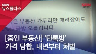 [줌인 부동산] '단톡방' 가격 담합, 내년부터 처벌