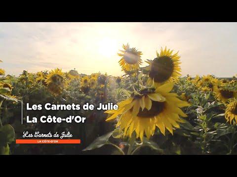 la-côte-d'or---les-carnets-de-julie