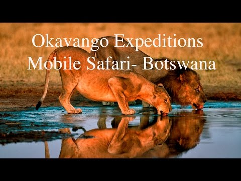 Okavango Expeditions - Mobile Safari in Chobe National Park and Moremi,  Botswana, African Safari