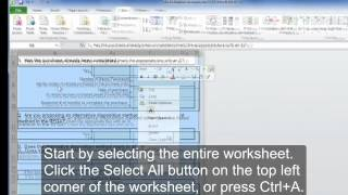 Creating Accessible Microsoft Excel 2010 Documents: Accessible Excel Forms, Part 2