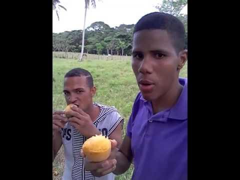 Qué rico mango welinton es el campeón