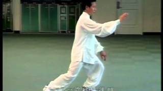 劉岳豪(清泉)鄭子太極拳37式 (起勢~斜飛式)