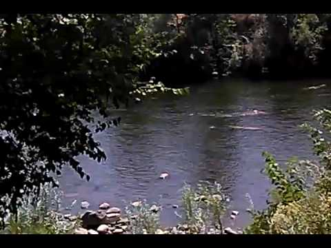 7/30/16 SWIMMING HOLE TRUCKEE RIVER RENO SPARKS NEVADA