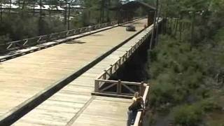 Vehicular Timber Bridge Construction Hs20-44 With Attached Boardwalk By Bridge Builders Usa, Inc.