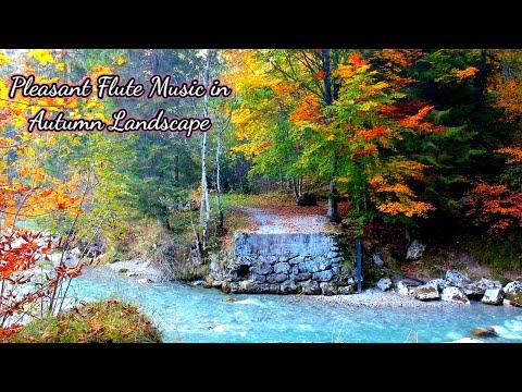 Pleasant Flute Music in Autumn Landscape, Autumn Landscape Music, Good Morning Music, Stress relief
