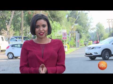 ኢትዮ ቢዝነስ ስራ ፈጣሪዎች (የጥፍር ውበት መስጫ)/Ethio Business Season 1 Ep 2 thumbnail
