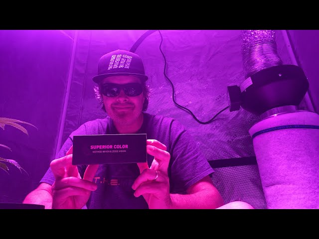 Grow tent  LED , method seven and Hash church
