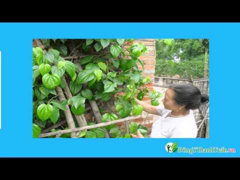 Mách bạn 5 thuốc chữa đau răng hiệu quả - www.dongythanhtuan.vn