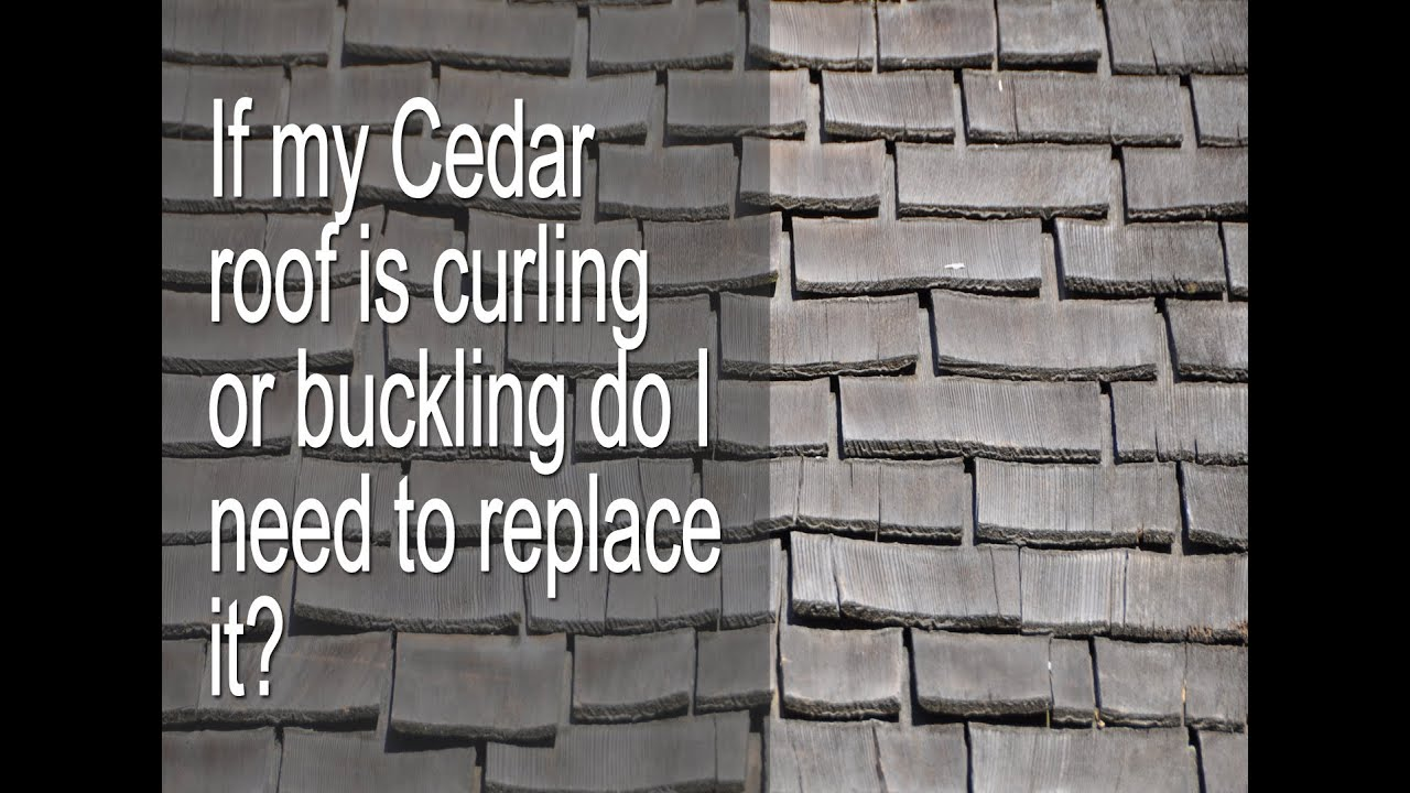 If My Cedar Roof Is Curling Lifting Cupping Bending Or