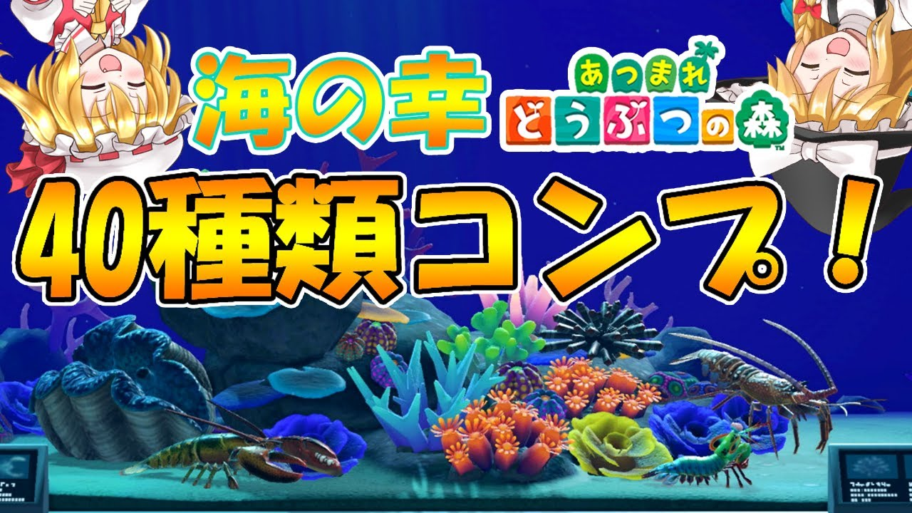 【あつ森】海の幸40種類コンプ!海の幸図鑑も紹介するよ!島民代表(笑)のあつまれどうぶつの森#50【ゆっくり実況】
