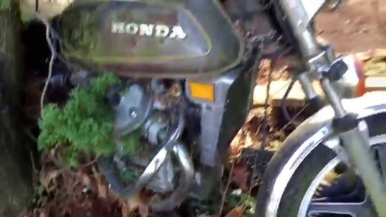 Tree Grows Around A 70 S Honda 500 Cafe Racer Youtube