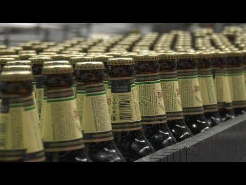 Posle 15 godina ponovo je pokrenuta proizvodnja brenda Zrenjaninsko pivo