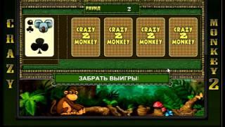 Игровой слот  Сумасшедшая обезьяна Делюкс (crazy monkey deluxe) - обзор от igrovye-avtomati.net(Видео обзор азартного игрового автомата Сумасшедшая обезьяна Делюкс (crazy monkey deluxe) от игрового клуба igrovye-avtom..., 2016-01-18T16:14:25.000Z)