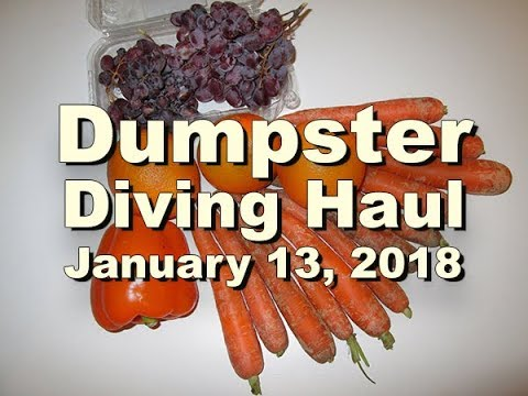Three Shades of Orange - Dumpster Diving Haul