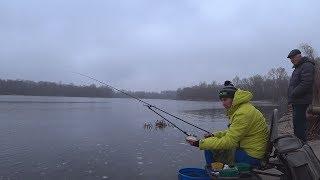 ФІДЕР ВЗИМКУ. Рибалка на Дніпрі по холодній воді. Грудень 2019
