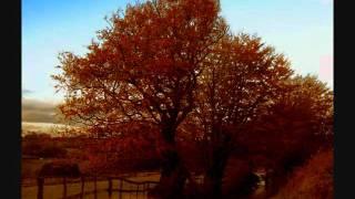 Benjamin Frankel, Symphony No.3 (2/2)