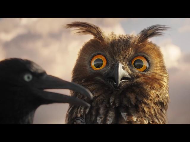 Lustige Vögel auf der Stromleitung