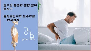 옆구리 통증 원인 근육 복사근 - 시청역 도수치료