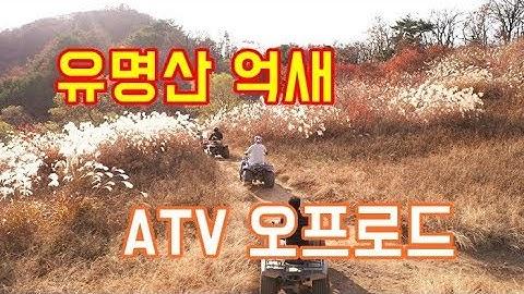 유명산 억새 & ATV 체험