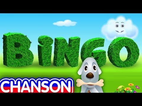 BINGO en français - comptines et chansons pour enfants - ChuChu TV