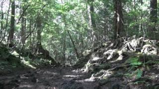 心霊マニアの旅 2012 山梨県 青木ヶ原樹海