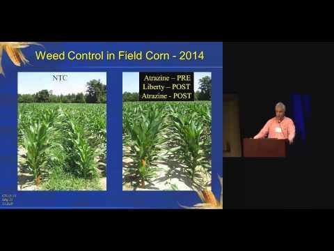 Weed Management Program