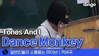 이번엔 통합 사회 시간에 부른 'Dance monkey…