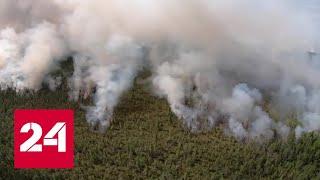 Уральские пожарные укротили огненную стихию в заповеднике \