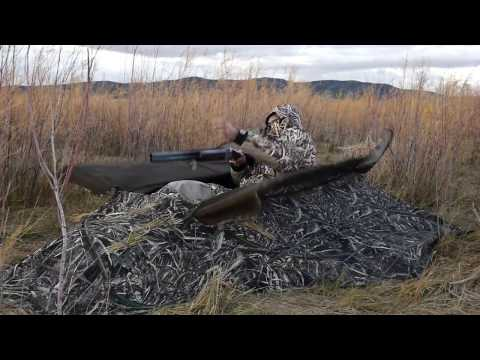 Alps Outdoors Delta Waterfowl Blind-- Video Review