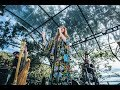 Florence And The Machine Queen Of Peace Acoustic Live At Sydney S Botanical Gardens Secret Show mp3