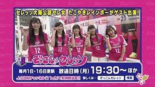 「ぞっこん  セレッソ  」11月前半号は「たこやきレインボー」をゲストに迎えて、セレッソ大阪メガストアからお届けします✨ ぜひご覧ください.