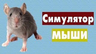 Симулятор мыши - убиваем всех животных игры