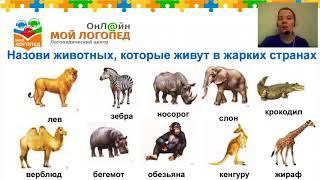 Животные жарких стран для детей 7 лет. Мой Логопед