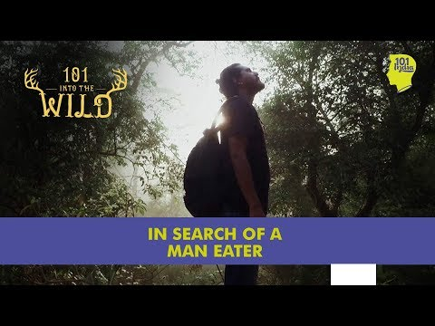 In Search of a Man Eater | Unique Travel Stories from India