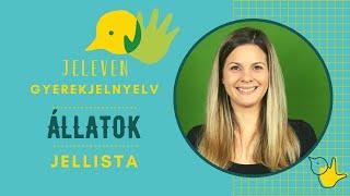 Jeleven online - JELLISTA 4 - Állatok
