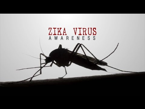 Zika Virus | Center for Disease Control and Prevention Awareness Video