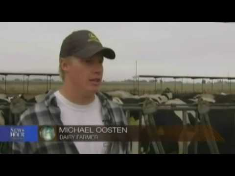 Global Recession Impacts Dairy Prices, Farmers