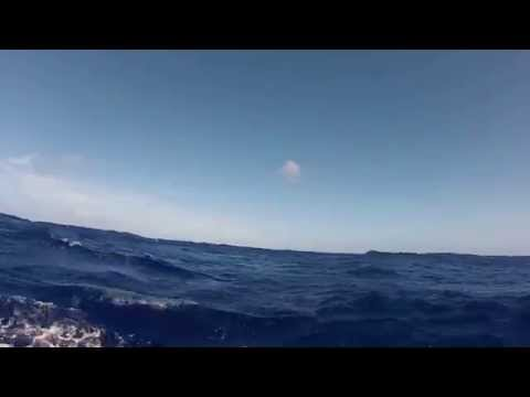 Sailing the Atlantic, ARC 2012