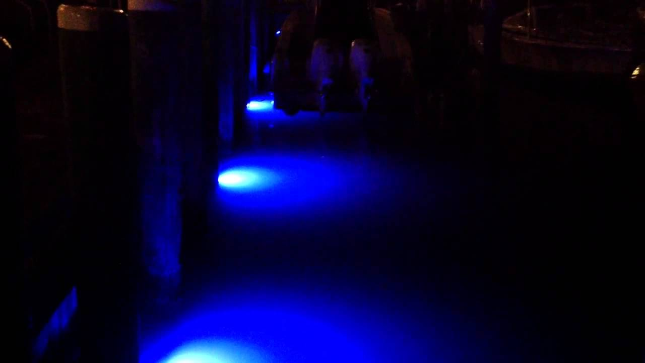 loomisled underwater dock lights (24leds) blue - youtube, Reel Combo