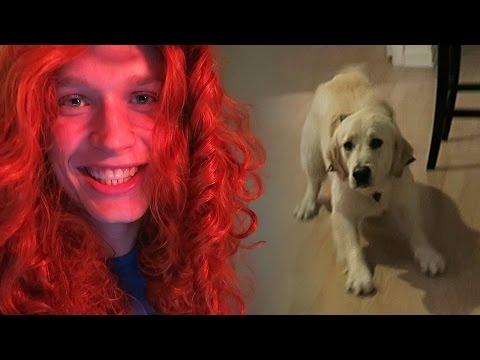 Trolling Cooper - Episode 2 - Scary Wig Man (Koda Pees on Himself)
