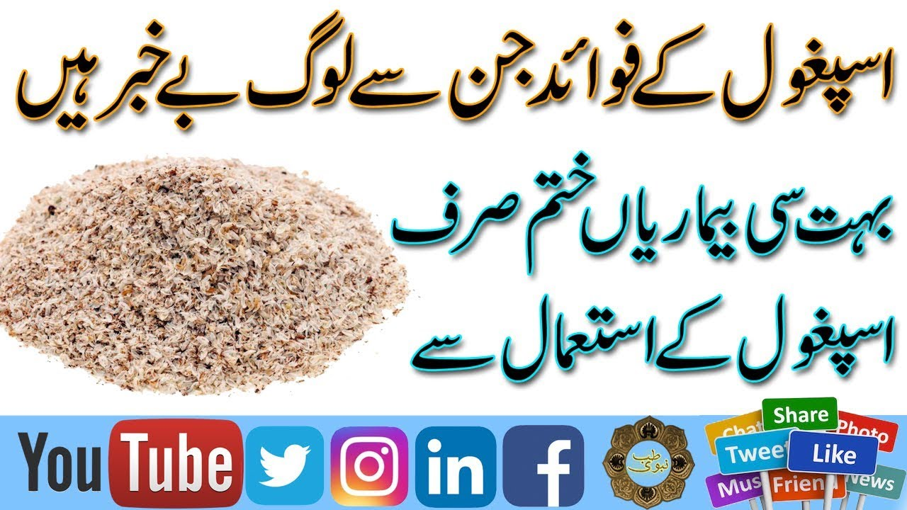 Health Benefits Of Psyllium Husk Isabgol Ke Fawaid Aur Khawas In