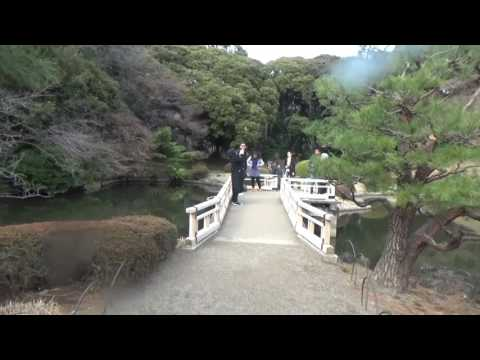 My Visit to Shinjuku Gyoen March 2017 vc1