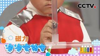 [智慧树]科学泡泡:小钢珠|CCTV少儿