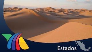 Conoce los médanos de Samalayuca   Noticias de Chihuahua