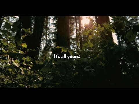 It's All Yours - National Forests