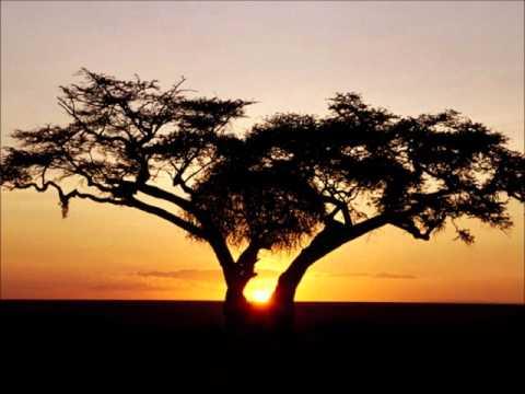 Digitaline - Africa