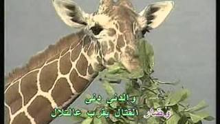 Arabic Karaoke Fairouz Chadi
