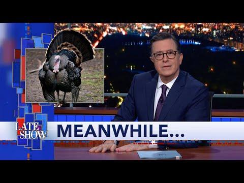 Meanwhile... Wild Turkeys Terrorize New Jersey?