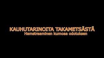 Kauhutarinoita Takametsästä - Hamstraaminen kumoaa odotuksen